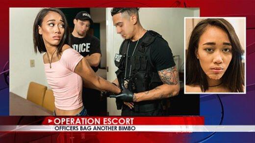 Free watch streaming porn OperationEscort Aria Skye Officers Bag Another Bimbo - xmoviesforyou