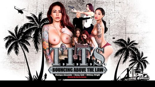 [DigitalPlayground] T.I.T.S: Bouncing Above the Law (09.12.2018)