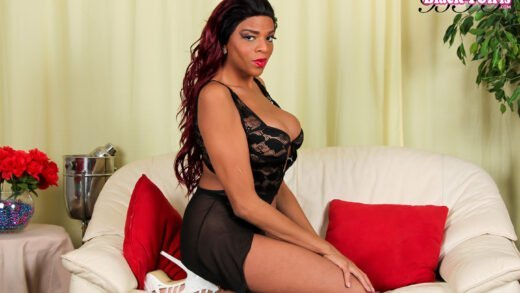 Alyssa Moore in  Blacktgirls Beautiful Alyssa In Sexy Black Lingerie March 22, 2016  Transsexual – Online Porn 24