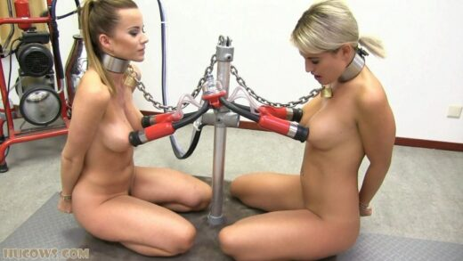 HuCows - Cindy Dollar And Nicole Vice - Friends Milked